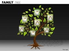 Business Framework Model Family Tree Mba Models And Frameworks