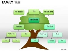 Business Framework Model Family Tree Strategy Diagram
