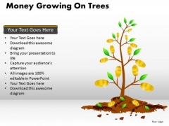 Business Framework Model Money Growing On Trees Sales Diagram
