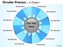 Consulting Diagram Circular Process 12 Stages Strategy Diagram