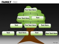 Consulting Diagram Family Tree Business Finance Strategy Development
