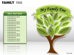Consulting Diagram Family Tree Strategic Management