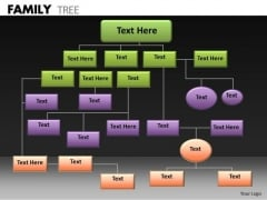 Consulting Diagram Family Tree Strategy Diagram