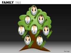 Mba Models And Frameworks Family Tree Business Diagram