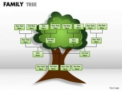 Strategic Management Family Tree 1 Consulting Diagram