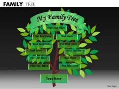 Strategic Management Family Tree Business Finance Strategy Development