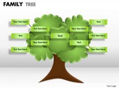 Strategic Management Family Tree Consulting Diagram