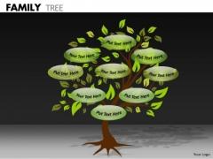 Strategic Management Family Tree Marketing Diagram